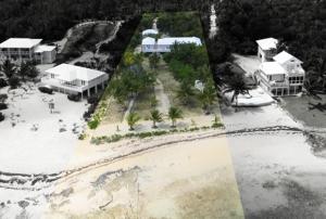 Palmetto Villa